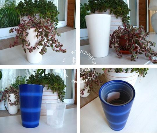 Как выращивать цветы в горшке без дырочки для слива воды?